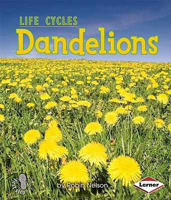 Dandelions By Nelson, Robin